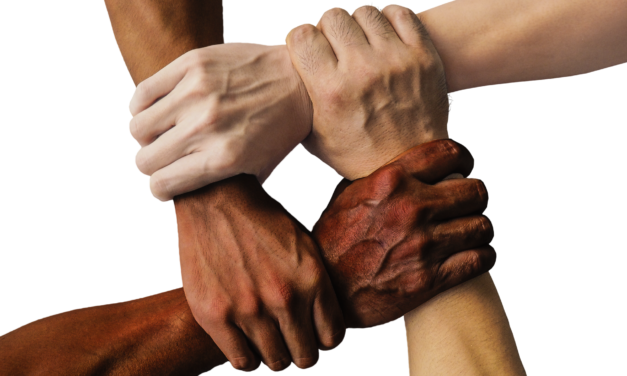 Gentis amb el Dia Mundial del Voluntariat